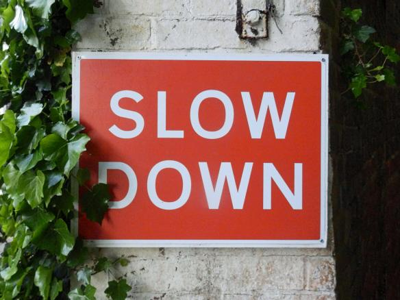 465e0c04434ee9f0fe6f21d01fde706e slow down
